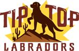 Top Labradors
